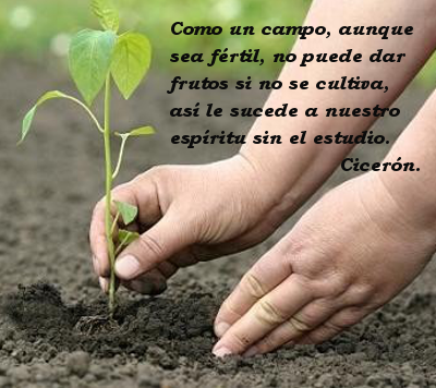manos_plantando_web