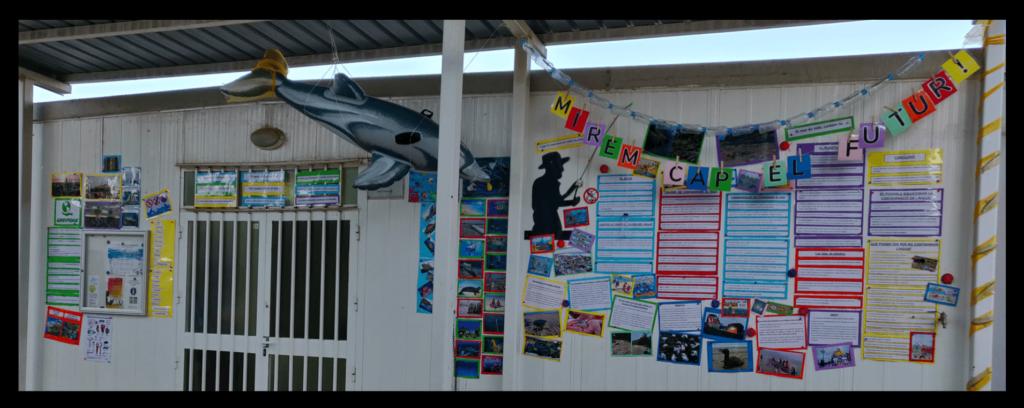 L'aprenentatge basat en projectes: cammpanya conscienciació, educació ambiental, contaminació