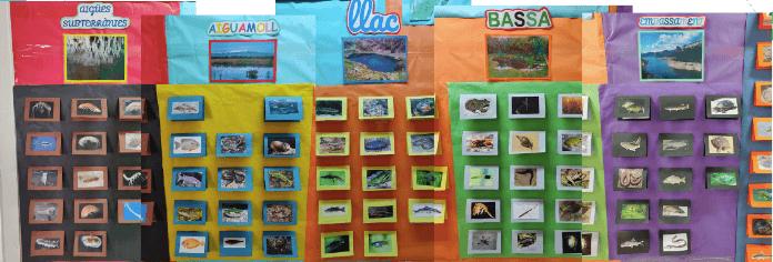 El treball per projectes: mural, animals aquàtics