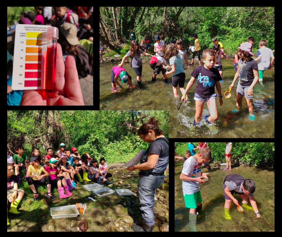 L'aprenentatge basat en projectes: sortida al riu, museu del ter, excursió, ciències