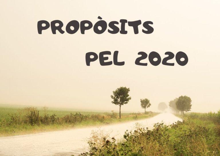 Els meus propòsits pel 2020