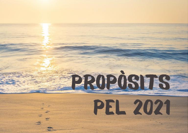 Els meus propòsits pel 2021