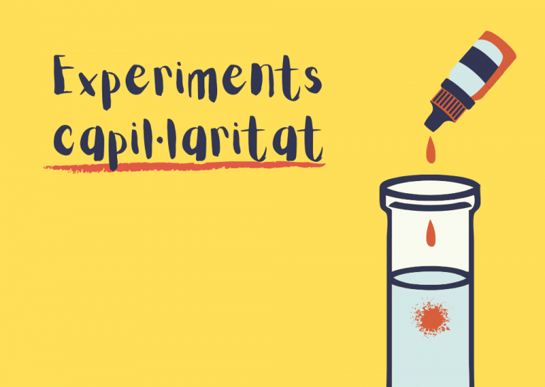 Experiments per treballar la capil·laritat